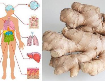 Ce qui arrive quand vous consommez du gingembre tout les jour pendant 1 mois