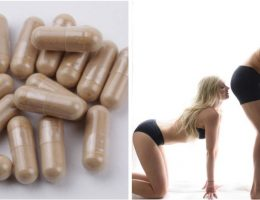 desormais-vous-pouvez-acheter-des-pilules-pour-que-vos-pets-sentent-la-rose-et-le-chocolat