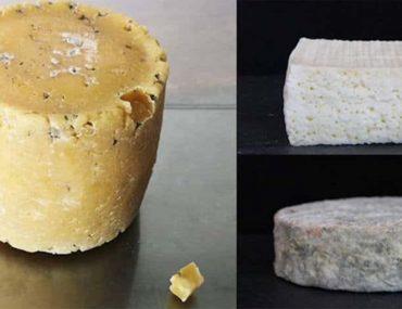 oui-le-fromage-humain-existe-et-il-est-fabrique-a-partir-de-bacteries-du-nez-du-nombril-des-aisselles-de-celebrites