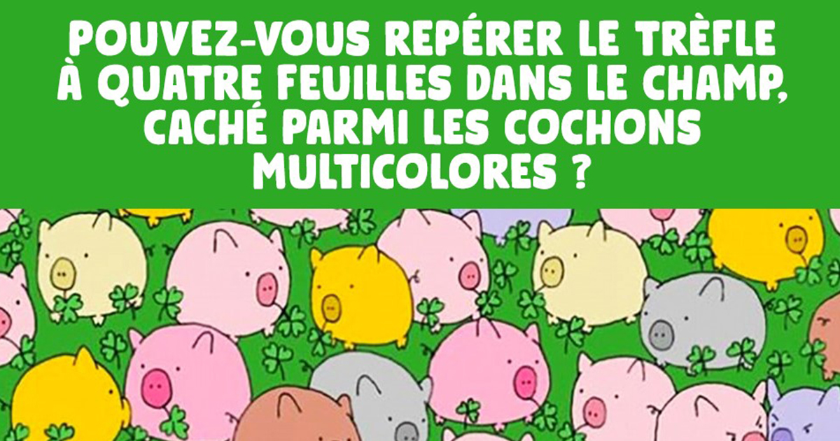 seuls-les-genies-pourront-reperer-le-trefle-a-quatre-feuilles-cache-parmi-les-cochons-multicolores