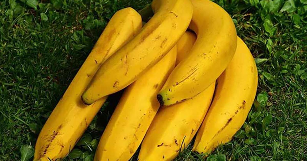 votre-pression-arterielle-est-elevee-voici-pourquoi-nous-devrions-manger-des-bananes-tous-les-jours