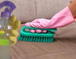 voici-un-melange-pour-un-nettoyage-a-sec-de-canapes-il-nettoie-desinfecte-et-neutralise-les-odeurs